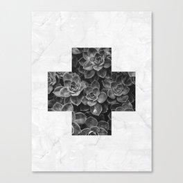 Botanic I Canvas Print