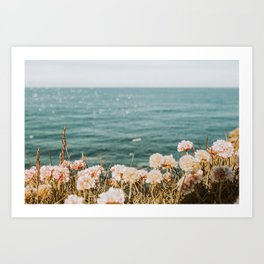 California Coast II Art Print