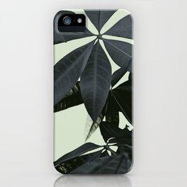 Pachira Aquatica #3 #foliage #decor #art #society6 iPhone Case