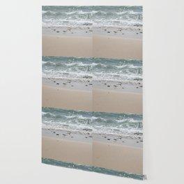 Seashore Sandpipers in tideland Wallpaper