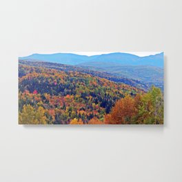 Immensity of Beauty Metal Print