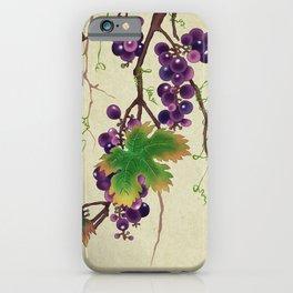 Minhwa : Grapevine Type B (Korean traditional/folk art) iPhone Case