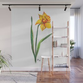 Narcissus flower Wall Mural