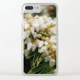 Delight DPSS170409a Clear iPhone Case