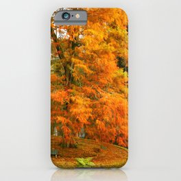 Willow in Autumn colors iPhone Case