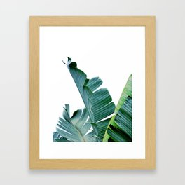 Banana Leaf #society6 #buy #decor Framed Art Print