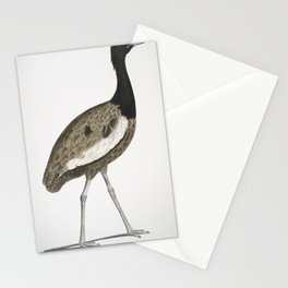 2548 Delicious Bustard Otis deliciosa Male 23 Natural size26 Stationery Cards