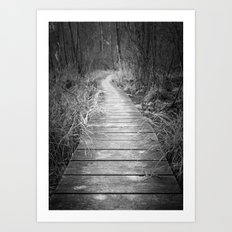 Marsh Boardwalk Art Print