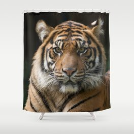 Look into my eyes by Teresa Thompson Shower Curtain