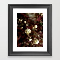 Blossoms in the university Framed Art Print