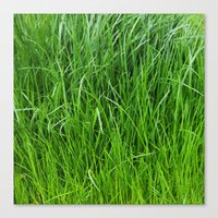 grass Canvas Prints featuring grass by Кaterina Кalinich