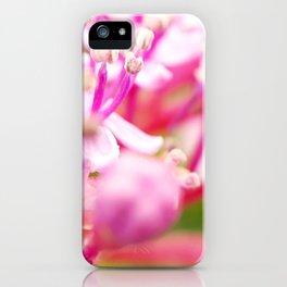 hortensie traum in pink iPhone Case