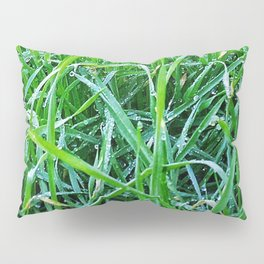 Dewy Grass Pillow Sham