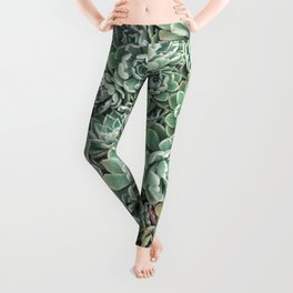 Succulent Bed Leggings