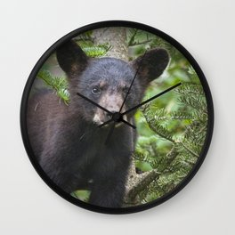 Black Bear Cub in Northern Minnesota Photograph Wall Clock