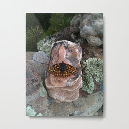 Butterfly Saved out of the Waterpot Metal Print