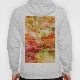 Abstract colorful nature landscape flower bloom rocks illustration Hoody