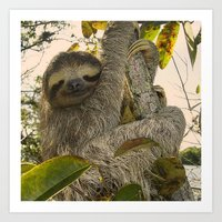 sloth Art Prints featuring Sloth by MehrFarbeimLeben
