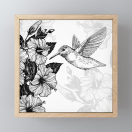 Hibiscus and hummingbird Framed Mini Art Print