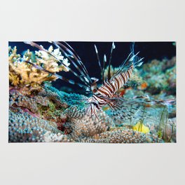 Lionfish on the Great Barrier Reef Rug