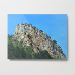 The rock Metal Print