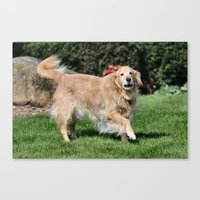 happiness Canvas Prints featuring Happiness by IowaShots