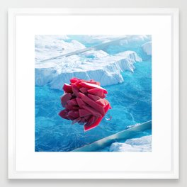 Arctic Gems Framed Art Print