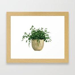 House Plant IV Framed Art Print