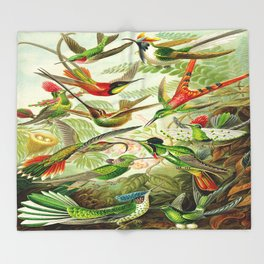 Kunstformen der Natur (Art Forms in Nature)a book of lithographic and halftones. Hummingbirds Throw Blanket