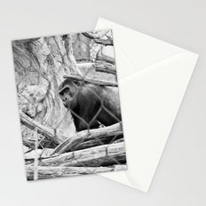 Corral Stationery Cards