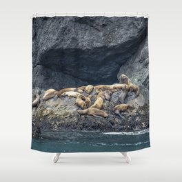 Master of the Harem Shower Curtain