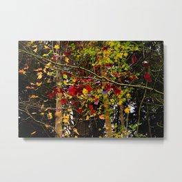 multicolored leaves Metal Print