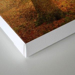 November I Canvas Print