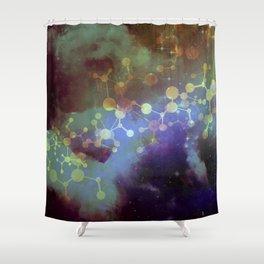 The Archivist Shower Curtain
