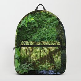 Rain Forest Backpack
