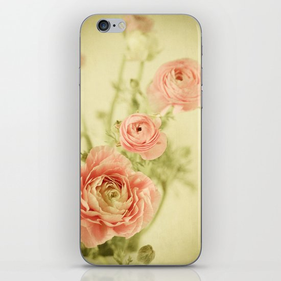 Sweet Spring iPhone & iPod Skin