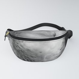 Snowy Owl - Black & White Fanny Pack