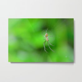 sideview spider Metal Print