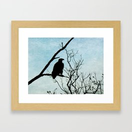 Eagle Waiting Framed Art Print