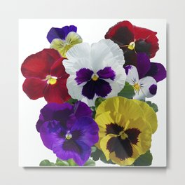 Pansies! Metal Print