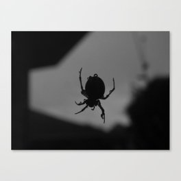 Spinning in the Rain Canvas Print