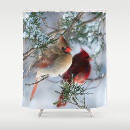 Shining on Her Own (Cardinal) Shower Curtain