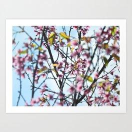 Eternal Spring Art Print