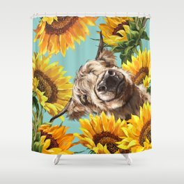 Highland Cow with Sunflowers in Blue Shower Curtain