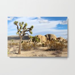 Joshua Tree National Park Metal Print