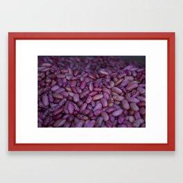 Kidney Beans in Santa Ana, Costa Rica Framed Art Print