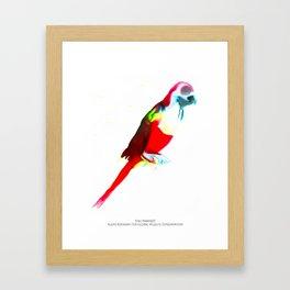 Sinu Parakeet Framed Art Print