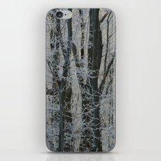 Michigan Winter  iPhone Skin