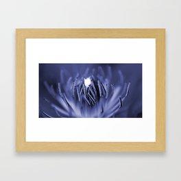Inside A Flower Framed Art Print