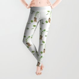Pilea. Chinese money plant. Leggings